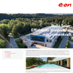 E.ON - Projektbericht